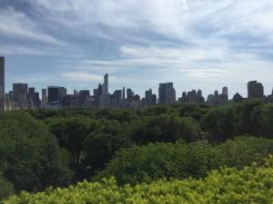 Inside New York Central Park, Big Apple, Manhattan, NYC