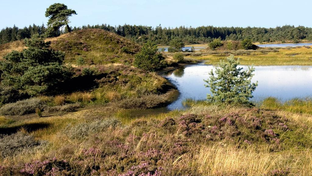 Landschaft, die zur gedanklichen Zeitreise einlädt © Visitvejle.dk
