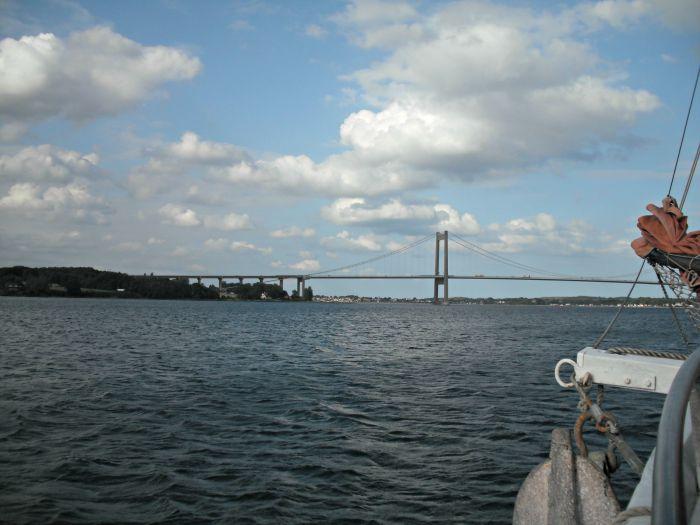 Blick vom Schiff, da hinten ist ein Schweinswal! © S. Plagge