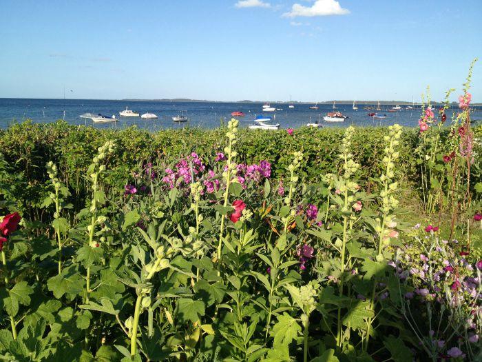 Zelten im Norden Geltinger Bucht Blumen und Boote 40-something.de