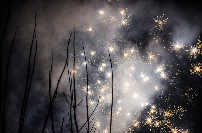 Ich glaub, ich steh im Wald: 2016 wird glänzend © Annette Göttlicher