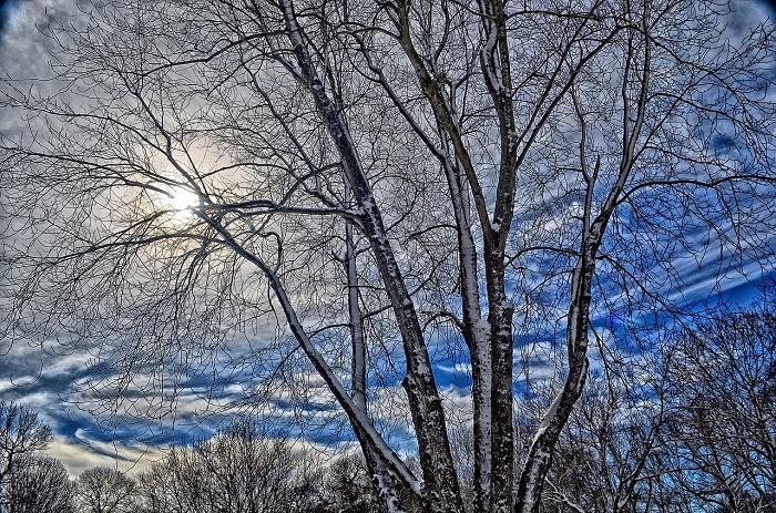 Winter - fies für die Haut (c) pixaby.com