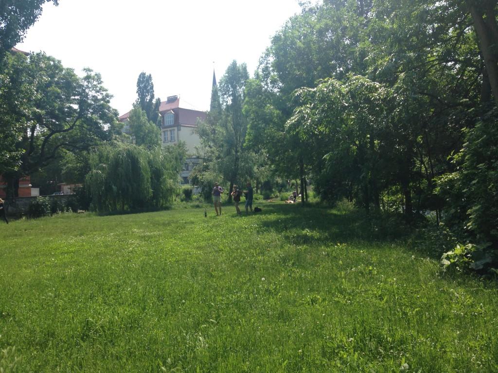 Grüne Gera: Mitten in der Stadt wird aufgespielt (c) Verena Carl