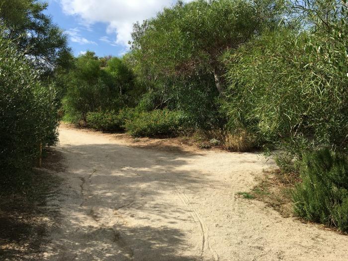 Sardinien-Urlaub Valle dell Erica 40-something.de @estherlangmaack