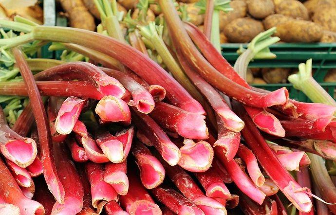 Rhabarber frisch vom Markt